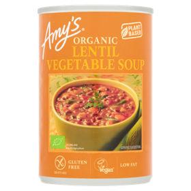 Organic Soup Kitchen Amys kitchen organic lentil vegetable soup asda groceries workwithnaturefo