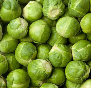 Brussels sprouts: The marvellous Christmas dinner staple