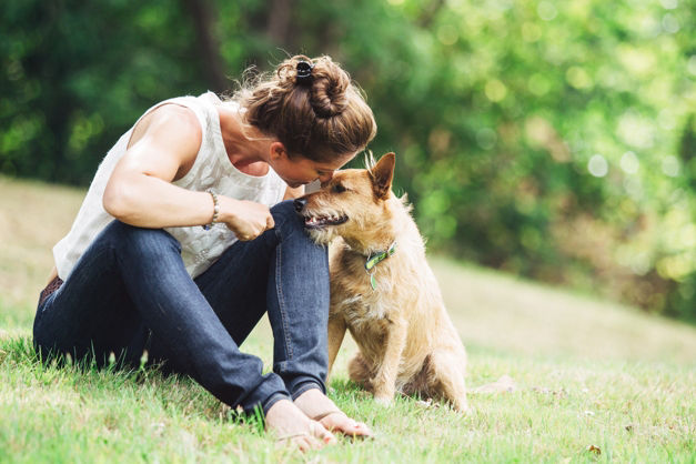 5 perfect treat ideas for your beloved pooch
