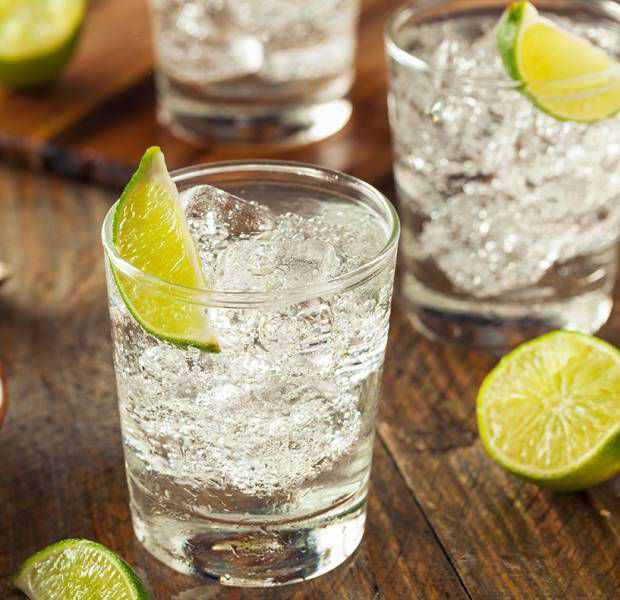 The perfect summer gin and tonic pairings