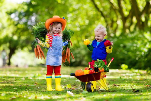 Get into the garden: How to get the kids involved